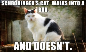schrodingers-cat-walks-into-a-bar-meme
